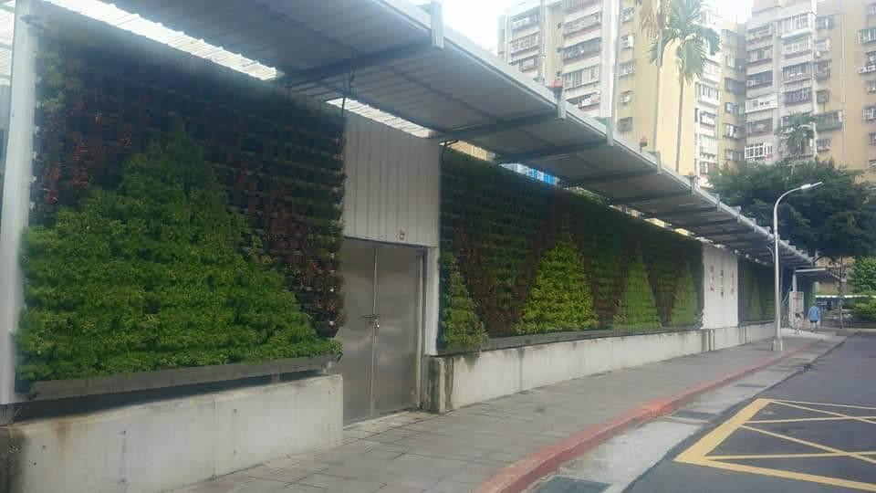 綠籬植生牆
