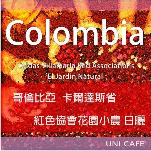 哥倫比亞 卡爾達斯省 紅色協會花園小農 日曬