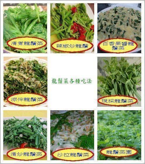 自產無農藥龍鬚菜∼品嚐新鮮直送的美味 最新鮮!最好