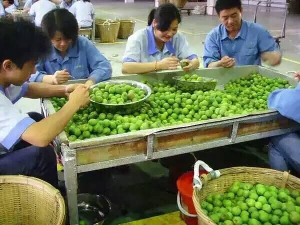 台灣風情梅酒11%750毫升