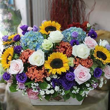 《繁華》精緻向日葵盆花