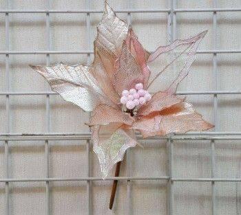 粉紅聖誕花-大