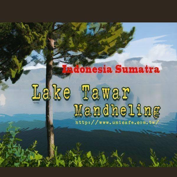 印尼 蘇門答臘 亞齊 塔瓦湖 綠寶曼特寧 19 Sc+