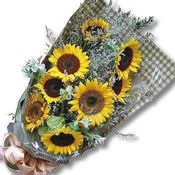 《十全十美》向日葵花束