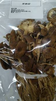 茶樹菇(純素)