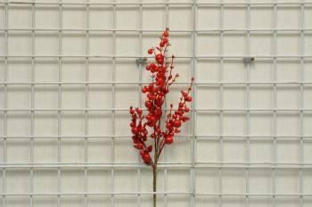 紅大小果紅葉長枝