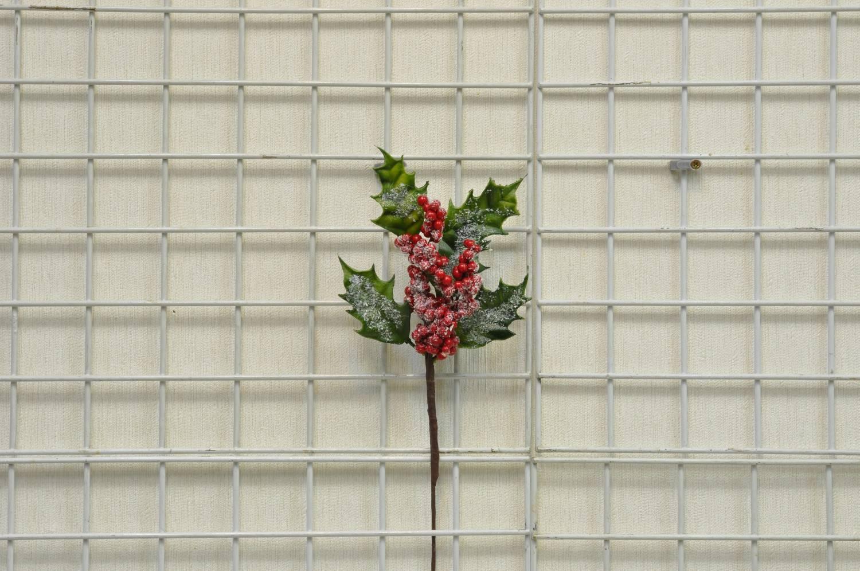 紅小果綠葉雪花短枝