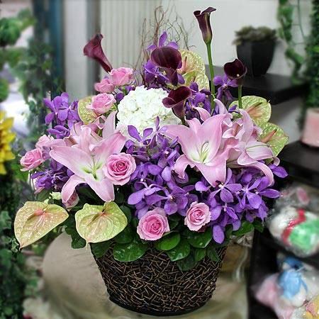《迎春納福》精緻桌上盆花