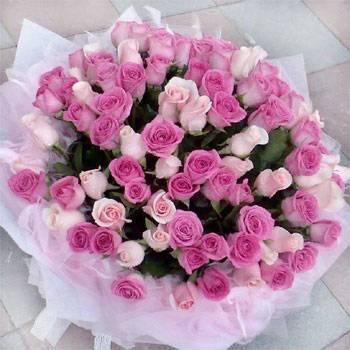 《夢幻愛情》99朵紫粉雙色玫瑰花束