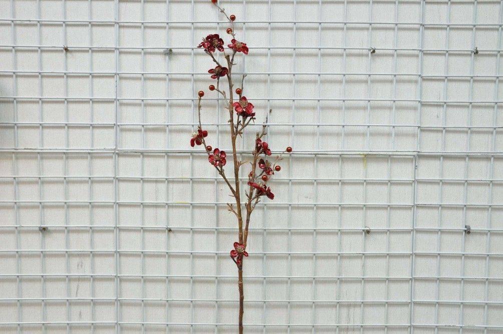 紅梅花果長枝