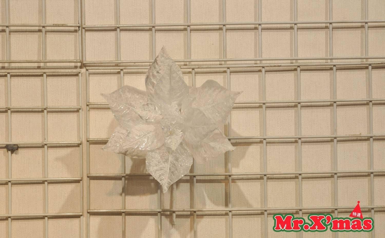 白色聖誕花
