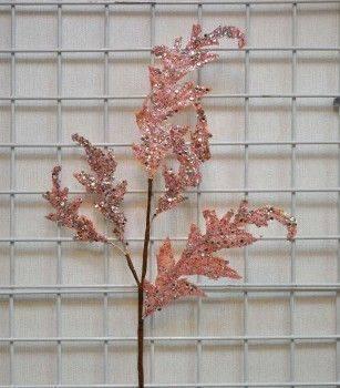 粉葉片長枝