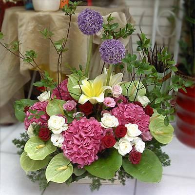 《福滿臨門》精選桌上盆花