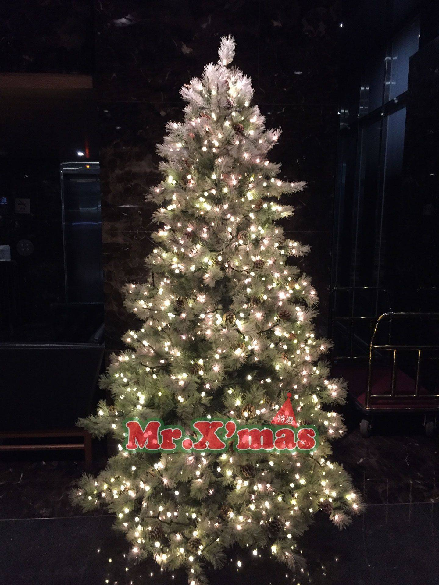 雪花樹燈光佈置