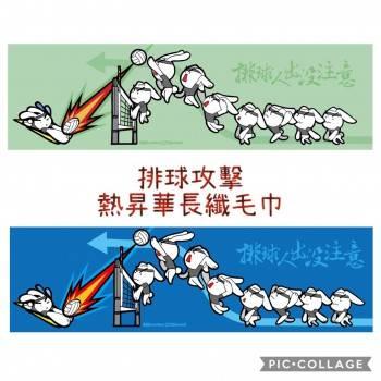 樂晴 熱昇華長纖毛巾 T03042-29-01